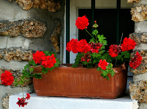 French Flowerbox